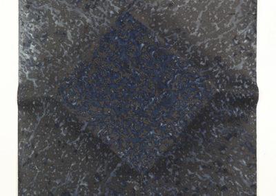 "Ecotone #67 (Bainbridge Island, WA 05.25-28.16, Draped with Sun Showers) 36x24x1"""