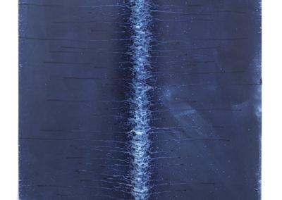 "Ecotone #42 (Bainbridge Island, WA 05.20.16, Draped with Downpour and Drizzle) 42x42x2"""