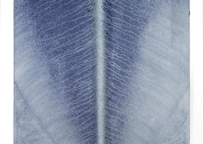 "Ecotone #31 (Bainbridge Island, WA 11.05.16, Draped with Drizzle, Twenty-Nine Minutes) 60x42x2"""